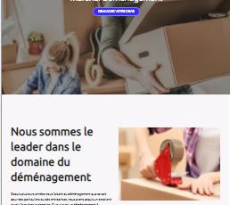 site web réalisé par GoTek pour le compte de marshal déménagement une entreprise de déménagement.